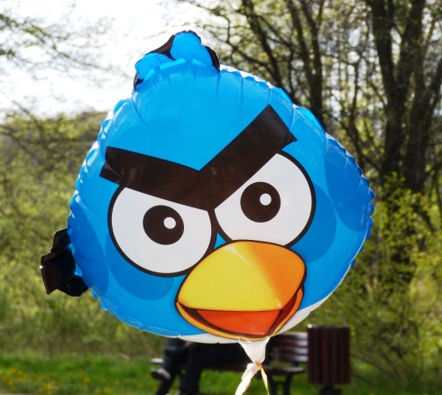 angry-birds-333624_1280
