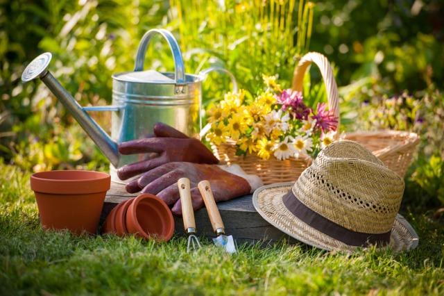 jardinnage3