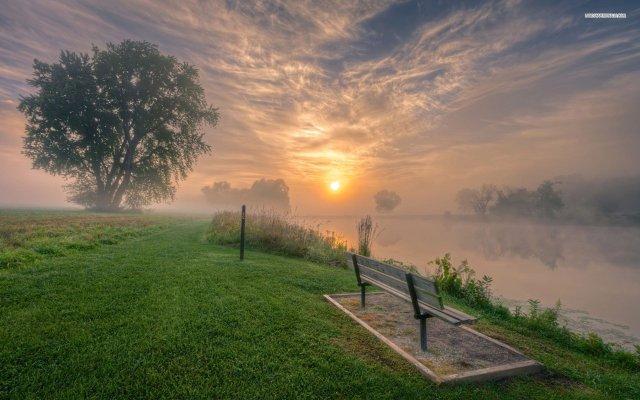 fog-bench-lake-grass-tree-sun-sky-cloud