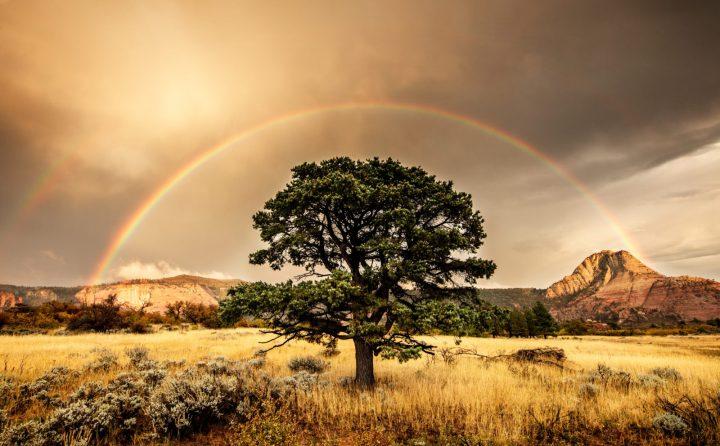 rj_hooper_silent-rainbow