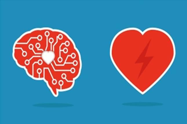 01 - brain vs heart