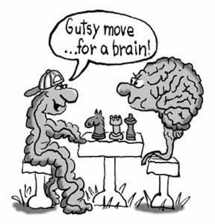 gut_brain_cartoon-1